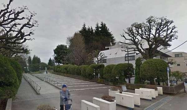 【悲報】ポケモン、世田谷公園にミニリュウが出るぞ!→公園がゴミだらけに!|面白ニュース 秒刊SUNDAY