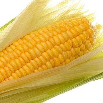 【ソレダメ】とうもろこしジャムのレシピ!農家直伝のトウモロコシレシピ!【7月6日】 - ちむちむの備忘録