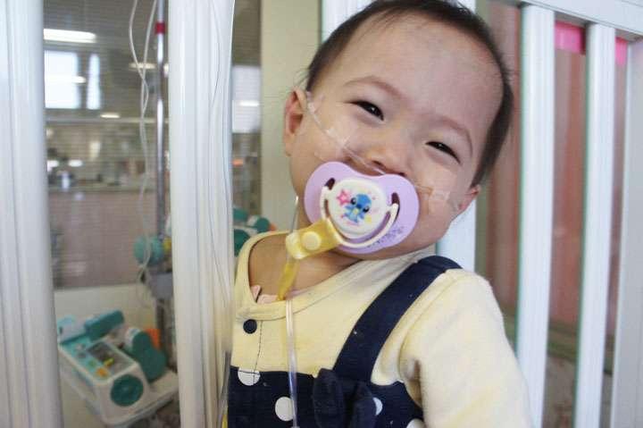 すずかちゃんを救う会 | 肺移植に向け 皆様のご協力をお願いします。