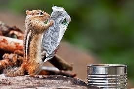 30日間心温まるニュースだけを書き込み続けるトピ