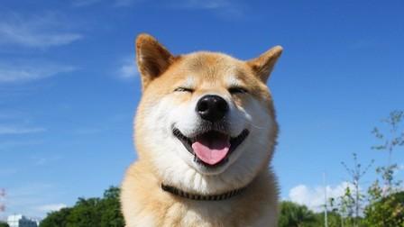 辛い時こそ笑顔、出来ている人いますか?