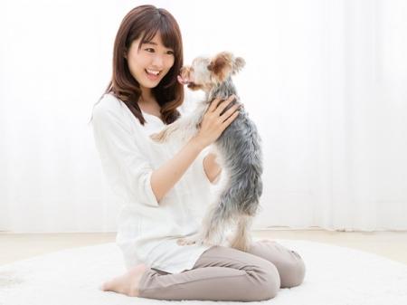 """""""自分の飼い主""""になってほしい独身女優1位は? (R25) - Yahoo!ニュース"""