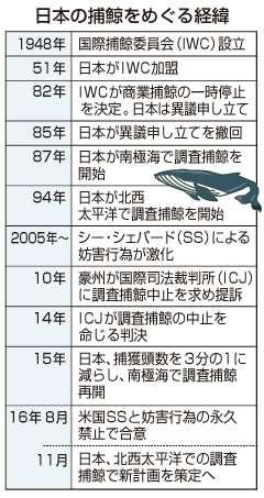 調査捕鯨再開で紛糾必至=日本への反発根強く-24日からIWC総会:時事ドットコム