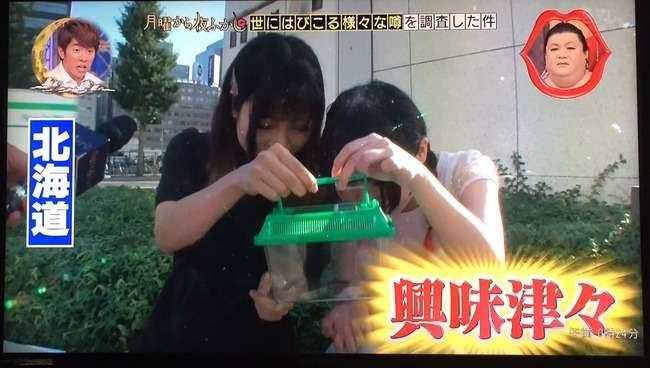 ゴキブリを1度も見たことない北海道民に見せた結果…