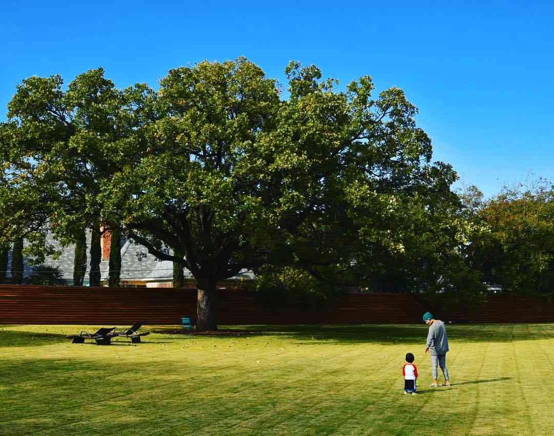 ダルビッシュ有 山本聖子との子供の写真を公開「スクスク育っています」に反響