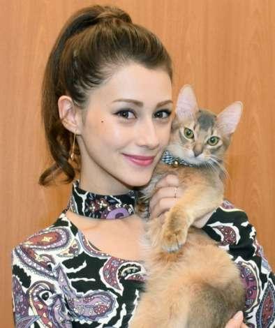 ダレノガレ明美、動物愛護への尽力を宣言 殺処分問題について語る