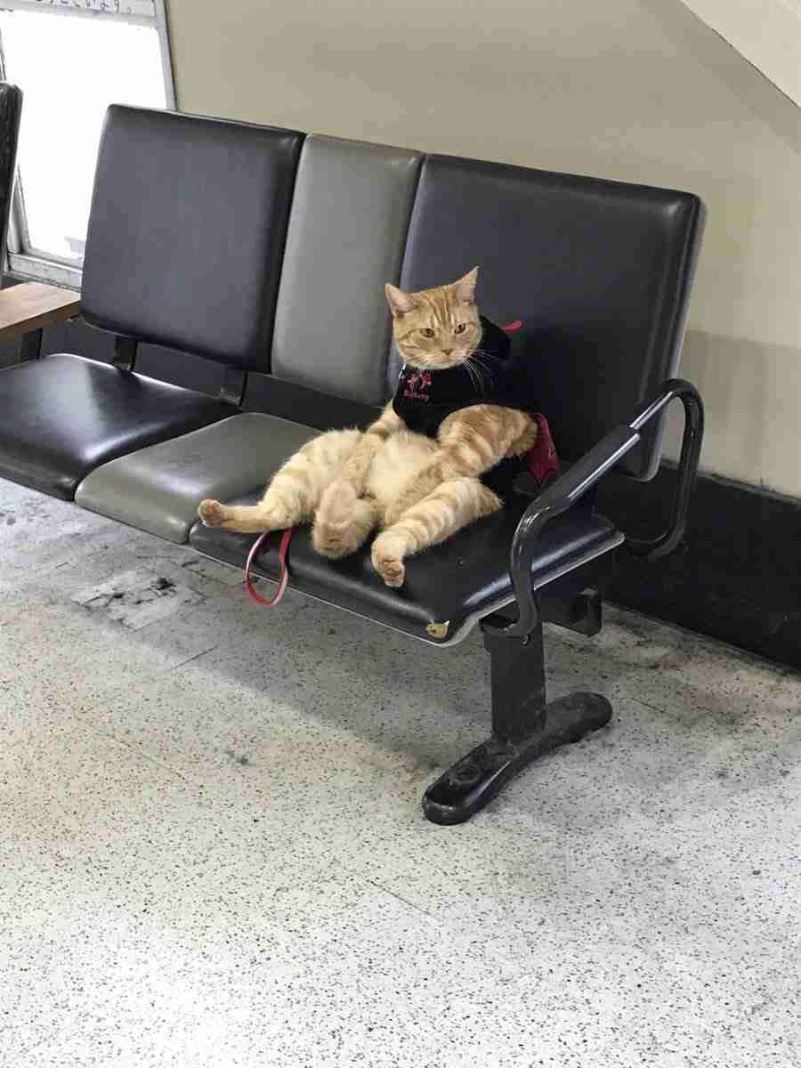 「駅のベンチで疲れたおじさんが座ってた」 パシャ