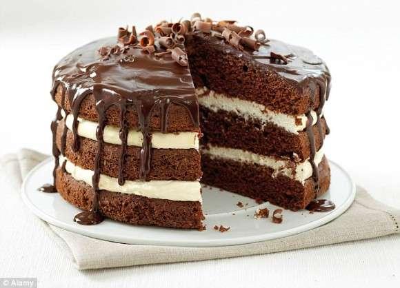 2017年、チョコレートケーキが朝食のトレンドに?記憶力向上や減量にも役立つ可能性(米・イスラエル研究)  : カラパイア
