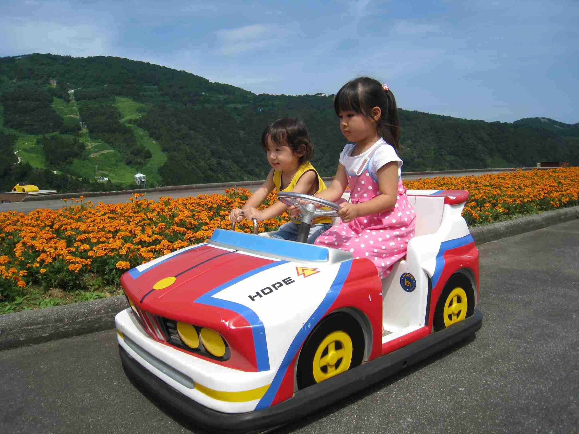 ペーパードライバーにオススメの車って何ですか?