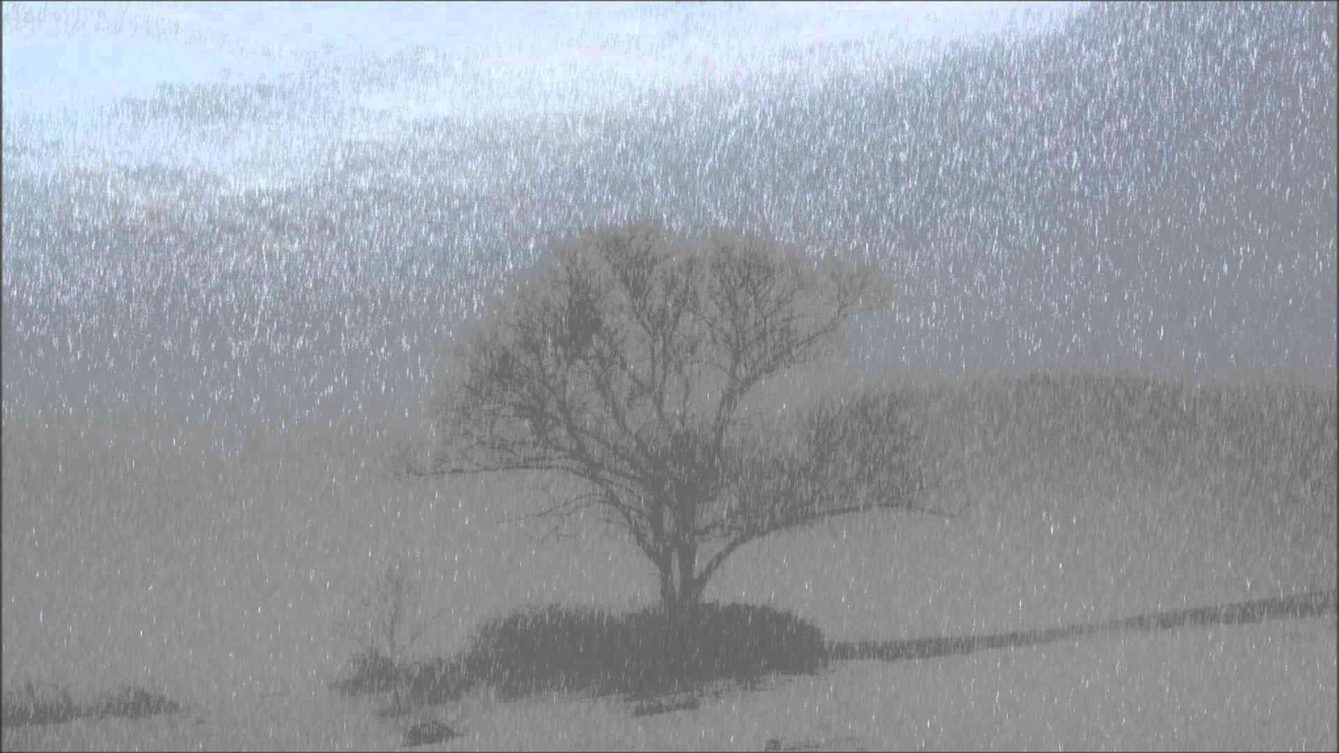 【自然音】雨強め3時間/Heavy rain 3 hours/Nature sound Healing chill out - YouTube