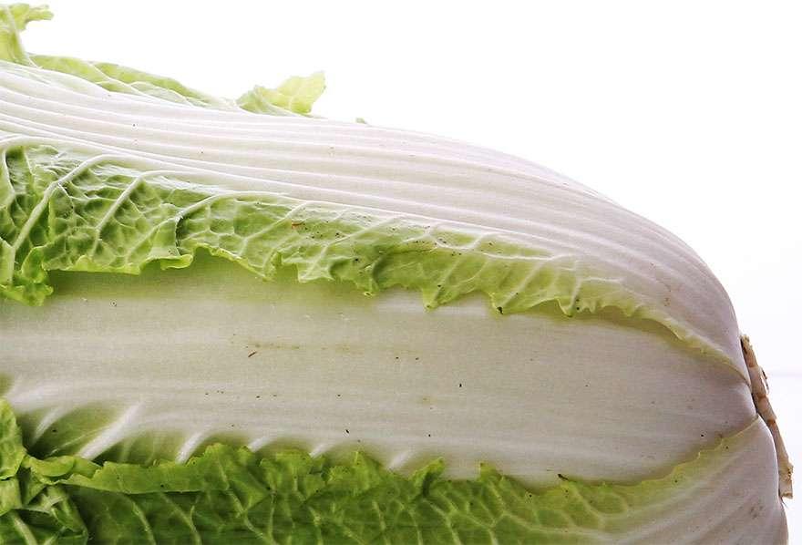 白菜に黒いブツブツ! カビてるじゃないの! 問題ないのにクレームをつける客 / スーパーや農家が困惑