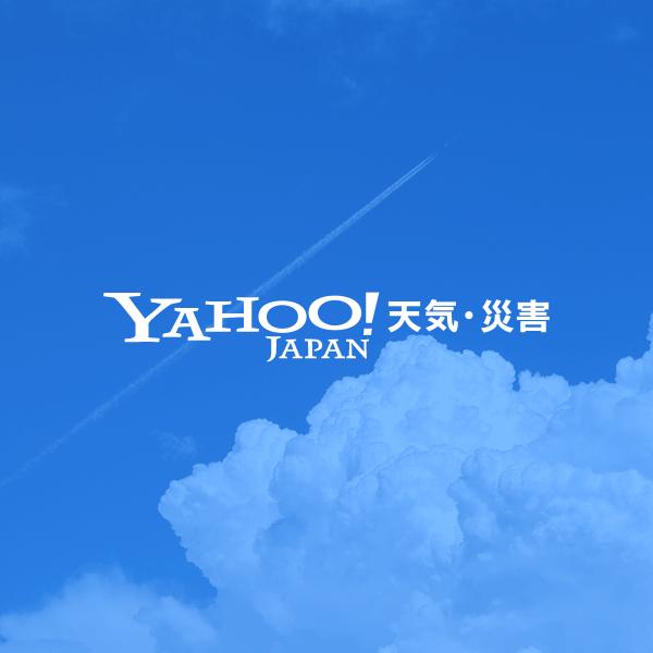 Yahoo!天気・災害 - 天気予報 / 防災情報