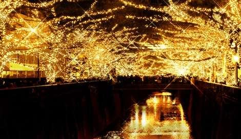 中目黒イルミネーションイベント、黄金LEDで2年ぶり復活