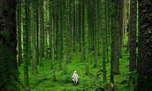 » さぁ準備はできているか? 冒険心をくすぐられる世界の絶景写真25選|トラベルハック|あなたの冒険を加速する
