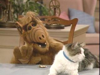 子供の頃から好きで見てる番組