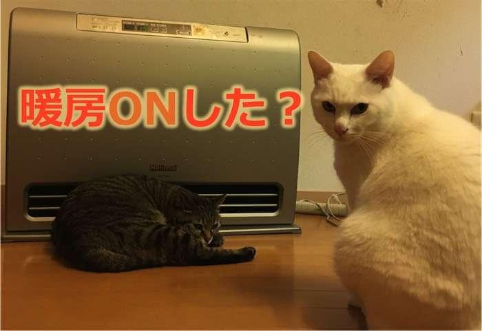 【全国調査】もう暖房つけましたか?