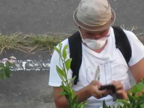 集団ストーカーに住居侵入され空気銃で撃たれました - YouTube