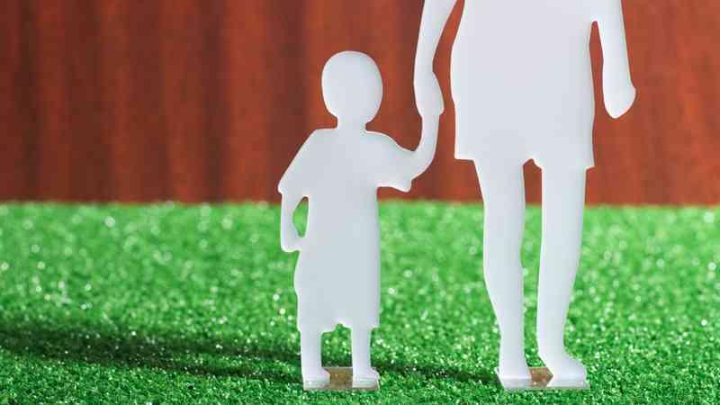 貧困層は生きられなくなる!? 財政審方針にツッコんでみるテスト(生活保護と母子世帯編)(みわよしこ) - 個人 - Yahoo!ニュース