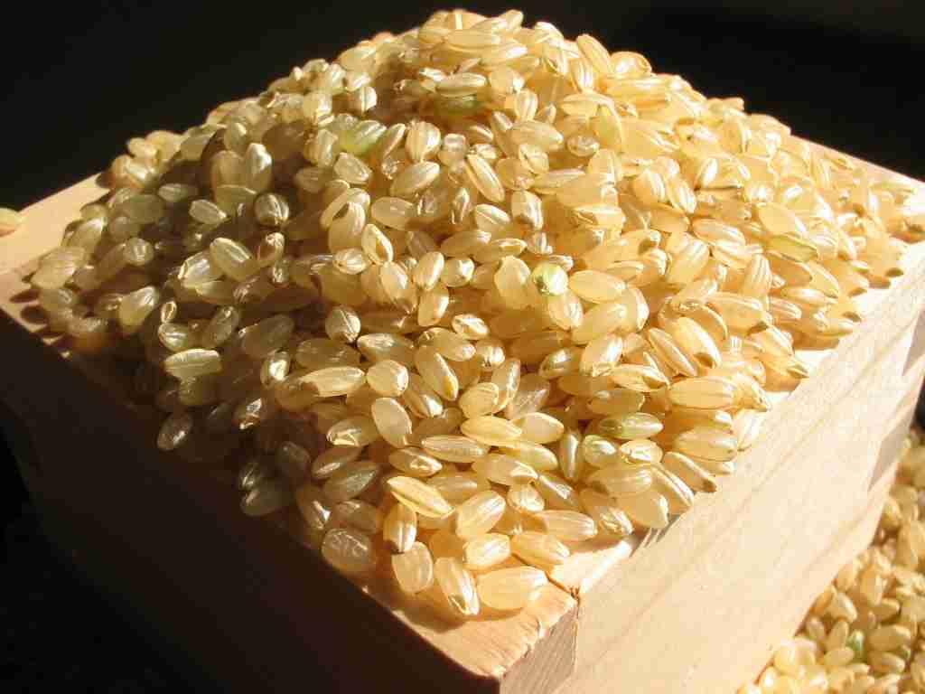 玄米好きな人いますか?