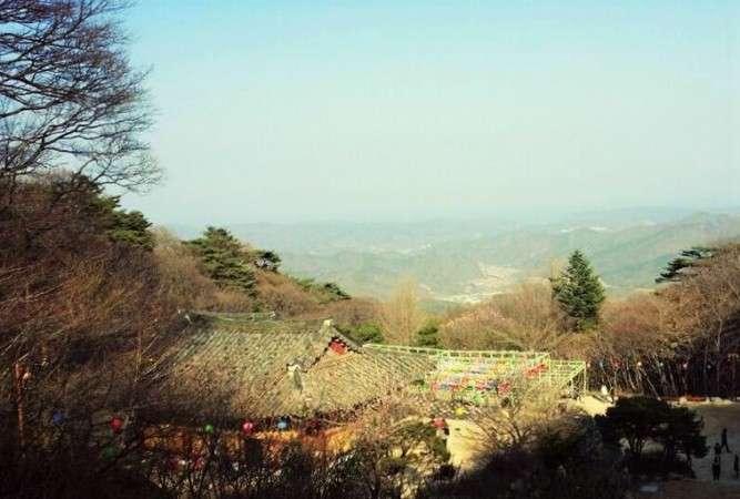 韓国、宗教団体所有の山で1000体超の遺体見つかる=ネットに衝撃