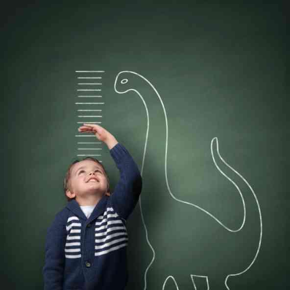 25万人のデータから、身長と遺伝子の関係性を解明「背の高さは80%遺伝で決まることが発覚」|「マイナビウーマン」
