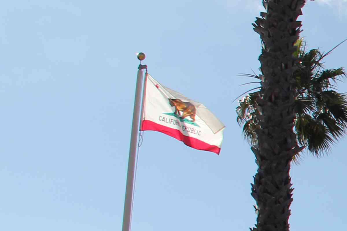 「トランプ勝利に耐えられない!」 カリフォルニア州で独立の気運高まる | ロケットニュース24