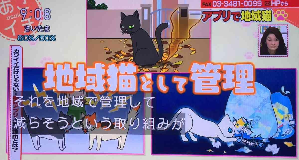 「あさイチ」で地域猫への毒エサを肯定するFAXにざわめき。井ノ原快彦の反論に賞賛の声!