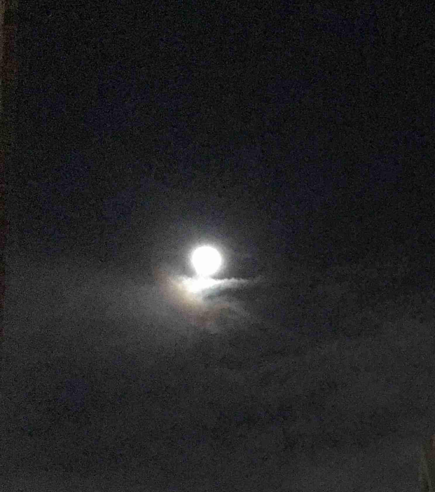 誰かに「月が綺麗ですね」と送ってみるトピ part2