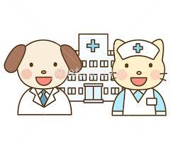 ペットを病院に連れて行きますか?行きませんか?