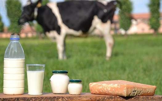 なぜ「ペットボトルの牛乳」は存在しないの?その理由に納得せざるを得ない