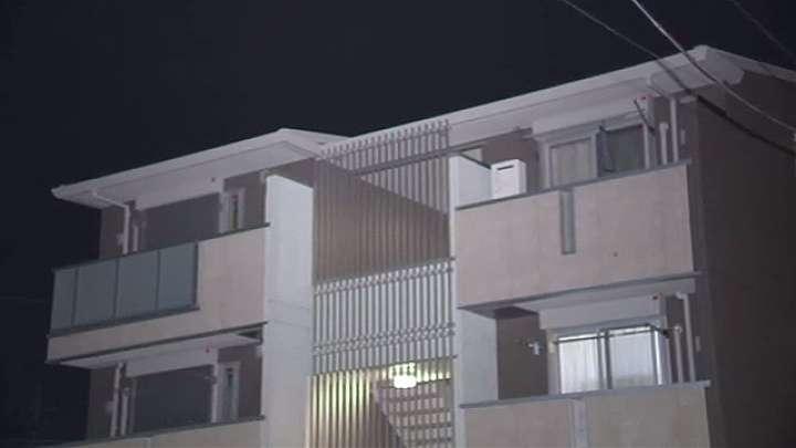 交際相手の顔を拳で殴り暴行した疑いで女逮捕、男性は死亡 News i - TBSの動画ニュースサイト