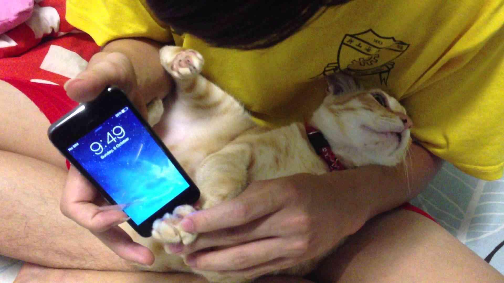 iPhone 5s Cat fingerprint - Robert got a new iPhone 5s !!! - YouTube
