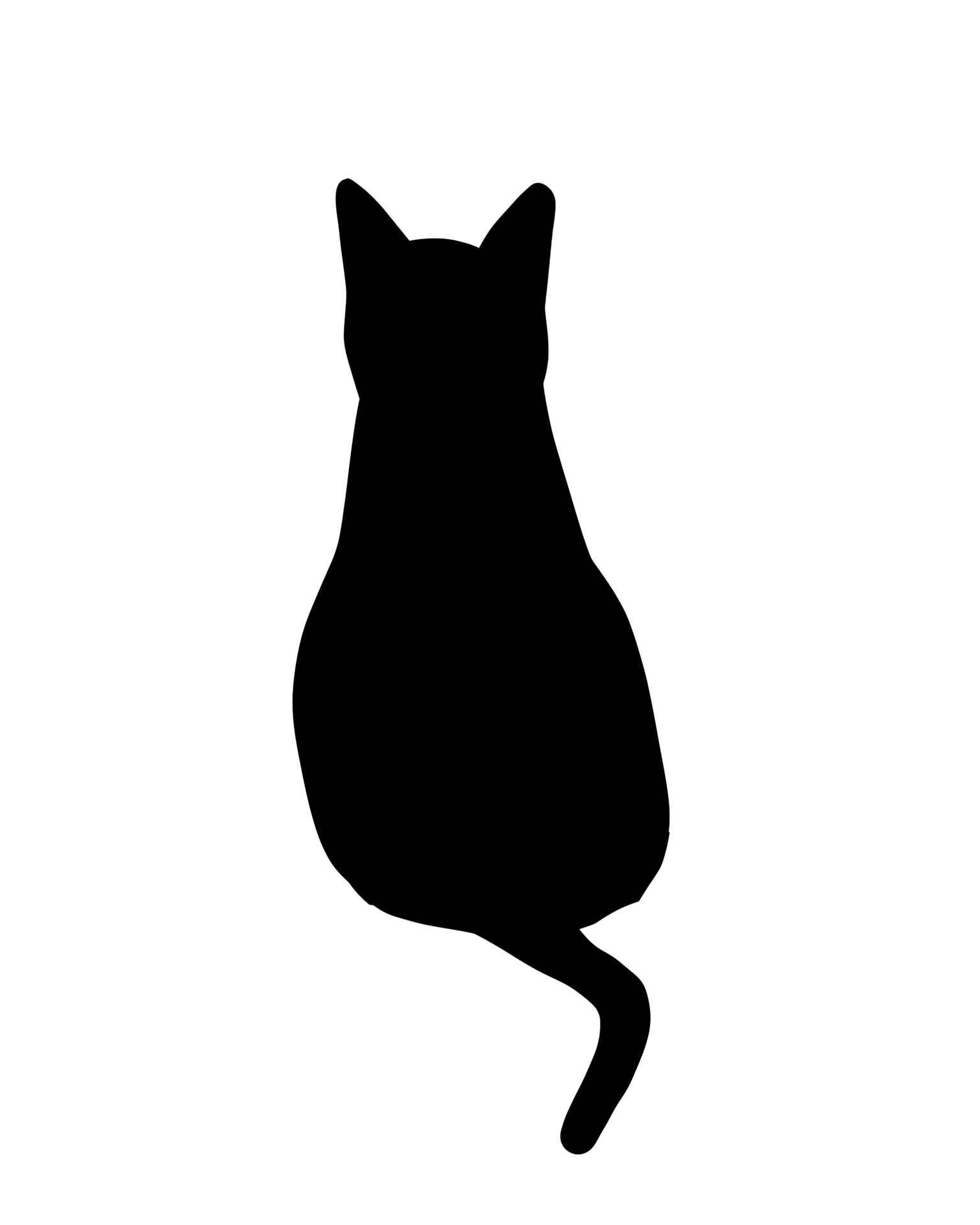 野良猫を結束バンドでつるし虐待容疑 男を書類送検 福岡