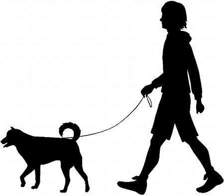 路上のウインナーソーセージから毒物検出、食べた犬死亡 和歌山市