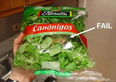 【閲覧注意】セブン-イレブンのサラダ「カマキリの足」混入か