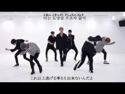 【日本語字幕/歌詞/ルビ】[Mirrored] 防弾少年団:血 汗 涙(Blood Sweat & Tears)' Dance Practice - YouTube