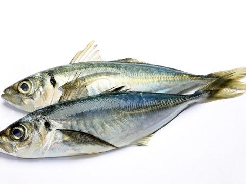 【医師が監修】体臭が原因で考えられる病気(10)魚臭症|メンズスキンケア大学