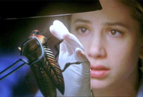 ゴキブリにひとつだけ能力を与えて一番絶望させた人が優勝