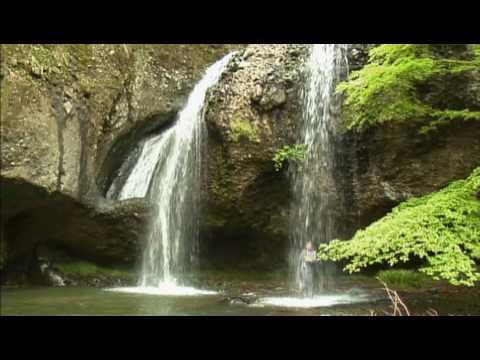 電気グルーヴ - ピエール瀧の体操42歳 - YouTube