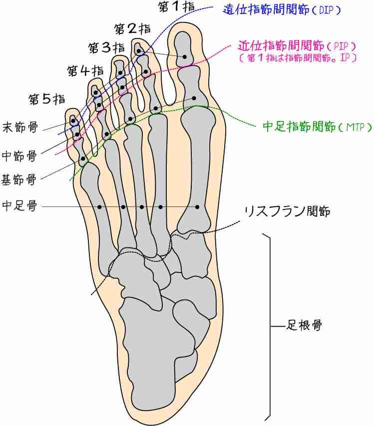 中学のトイレ扉で足指切断 被害生徒が姫路市提訴
