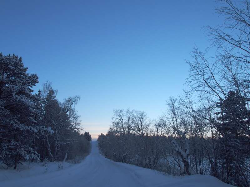 寒さと敵意に耐えられない…フィンランドに来たイラク人難民の多くが帰国していた事が明らかに