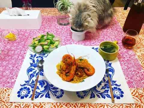 おうちごはん 猫とグリーンと暮らす家/うたまるオフィシャルブログ