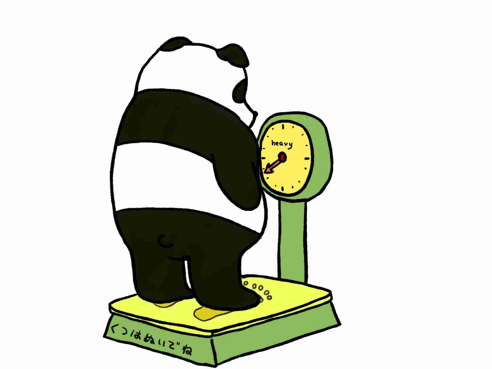 あなたの好きな食べ物と身長体重は?