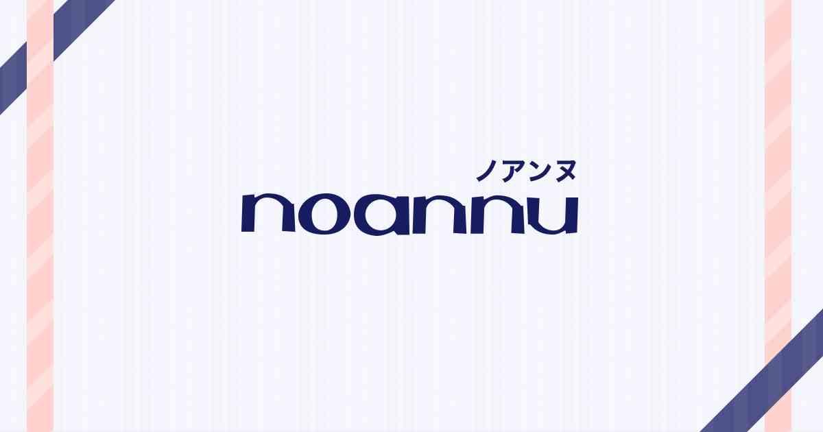 ぽっちゃり大きめサイズのレディース服通販|noannu ノアンヌ