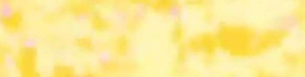 2016年CM王&CM女王発表!タレントCM起用社数ランキング! | よろず堂通信