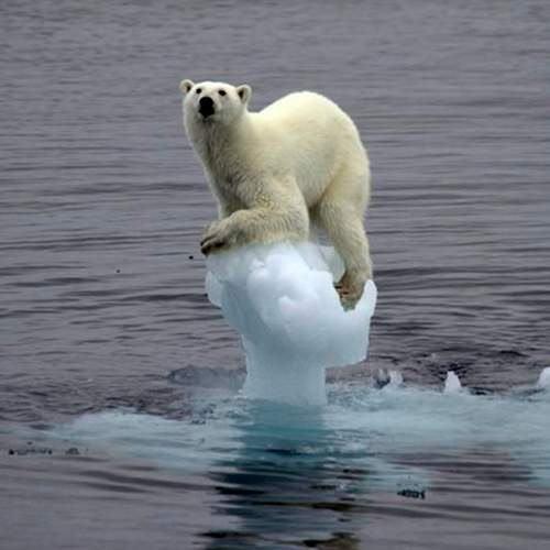 武田邦彦「今年は地球温暖化がデマだとバレる!石油は600万年もつ。じゃんじゃん使いまくれ」