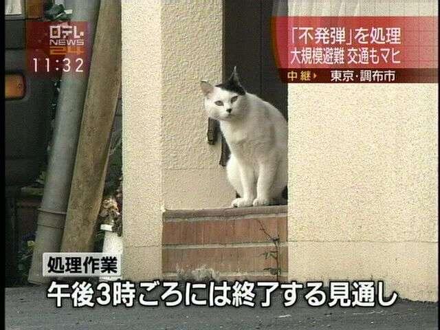 23区「外」の東京を語りましょう♪