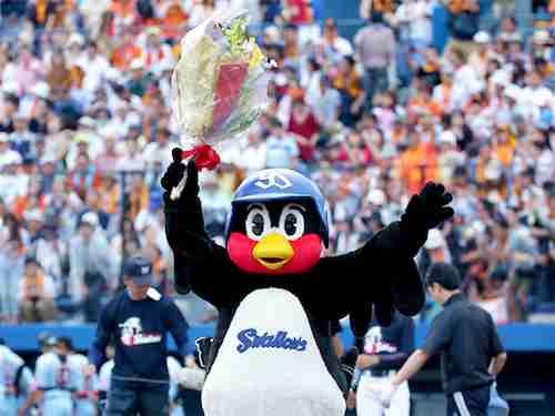 つば九郎の契約更改と年俸の推移。畜生ペンギンの腹黒な性格もあわせて紹介。 - ゴトーのブログ