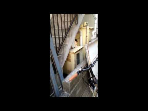心霊動画 paranormal activity video - YouTube