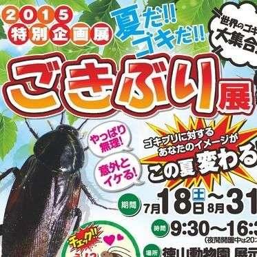 マジかこの衝撃イベント…徳山動物園で『ごきぶり展』が開催(゚A゚;) - NAVER まとめ